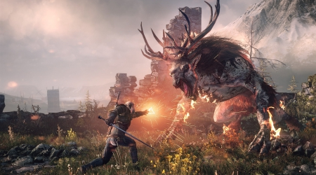 Error BEX64 correction in The Witcher 3
