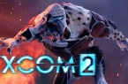 How to fix error code 41 in XCOM 2?